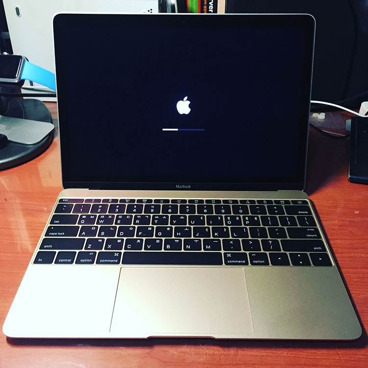 12인치 MacBook Gold